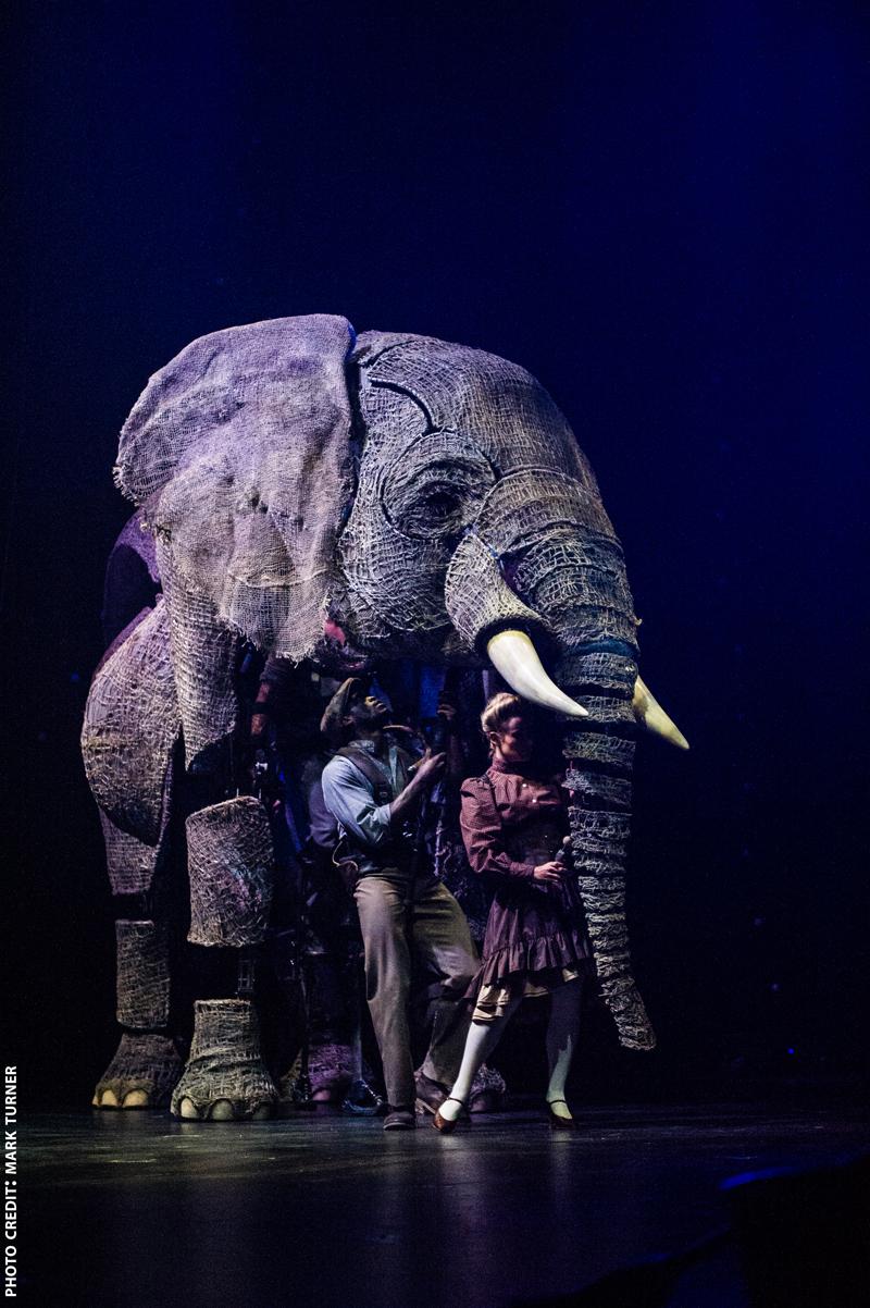 Circus 1903 Elephant